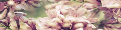 ber/love34.jpg