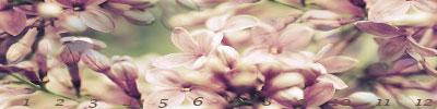 love/love34.jpg