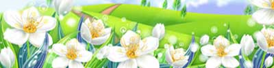 vesna/cvet5.jpg